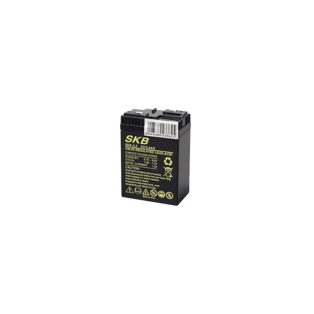 Batteria al piombo 6V 4.5Ah SK6-4.5