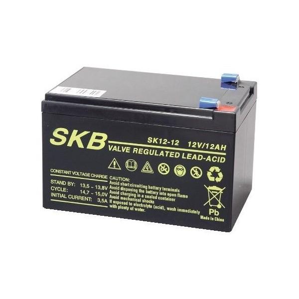Batteria al piombo 12V 12Ah SK12-12